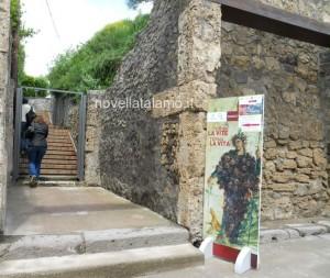 Pompei aspettando Vinitaly, l'ingresso nella zona archeologica