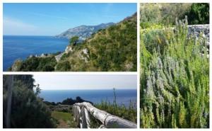 Tenuta Solomita, la vista e la Macchia Mediterranea