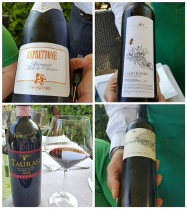 Lo Stuzzichino, i vini