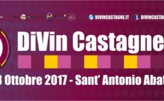 Divin Castagne 2017
