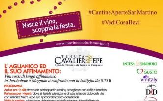 Cantine Aperte a San Martino alla Tenuta Cavalier Pepe